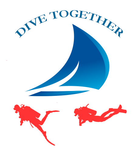 Dive Together